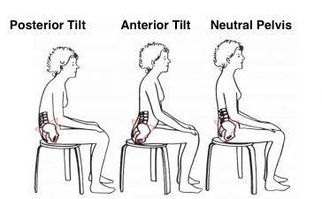 Neutral Pelvis Sitting